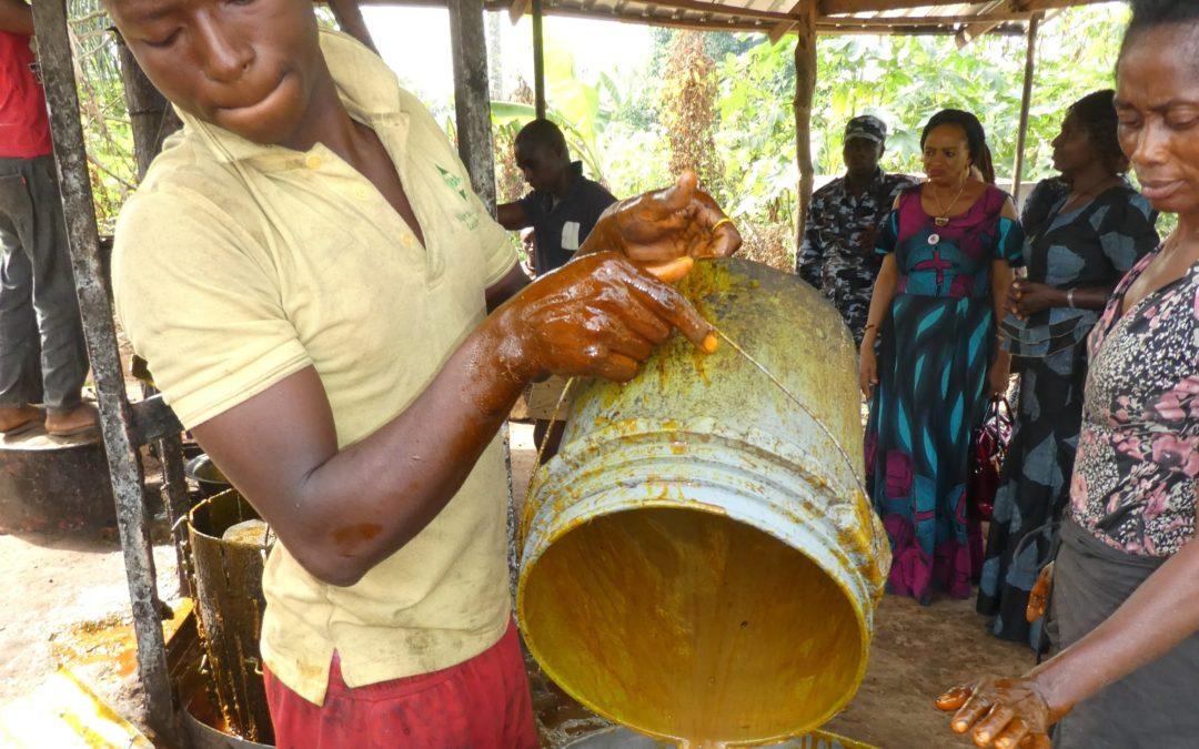 OBINABO Palmöl-Kooperative